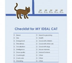 Free New Kitten Checklist