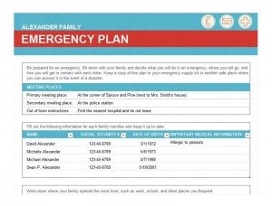 Free Emergency Checklist