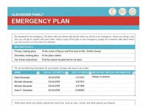 Free Emergency Checklist